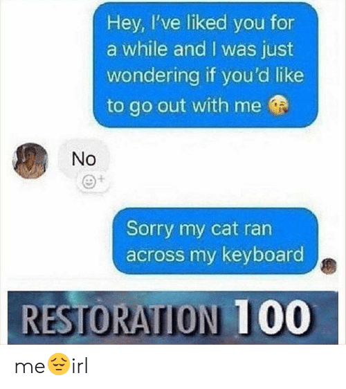 Restoration: Hey, I've liked you for  a while and I was just  wondering if you'd like  to go out with me  No  Sorry my cat ran  across my keyboard  RESTORATION 1 00 me😔irl