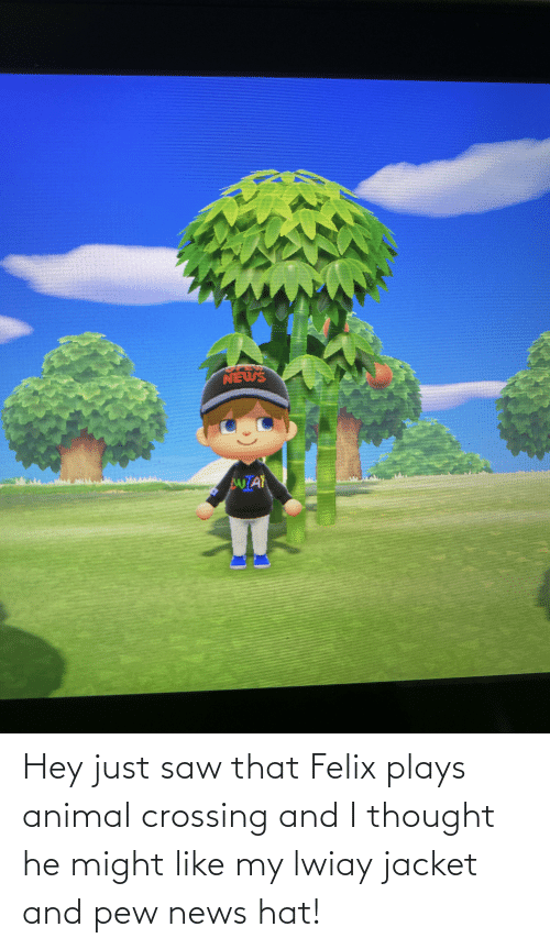 jacket: Hey just saw that Felix plays animal crossing and I thought he might like my lwiay jacket and pew news hat!