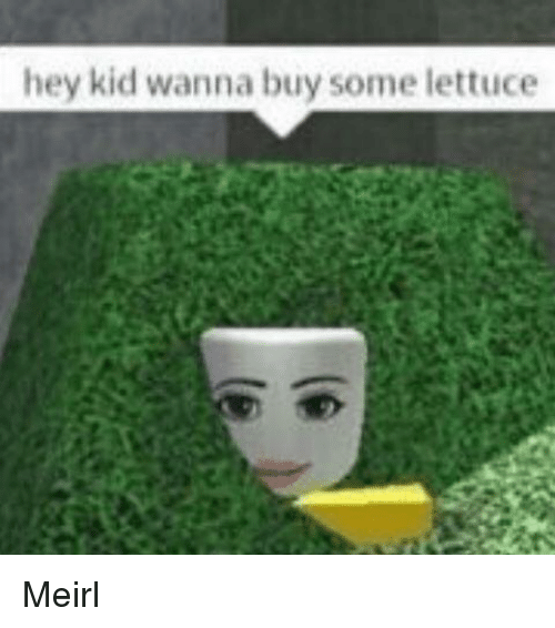 hey kid: hey kid wanna buy some lettuce Meirl