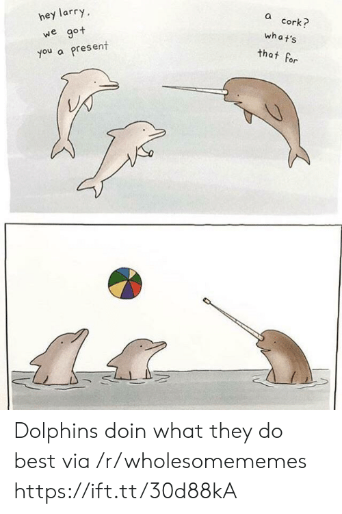 Doin: hey larry  a cork?  we  got  what's  present  you a  that for Dolphins doin what they do best via /r/wholesomememes https://ift.tt/30d88kA