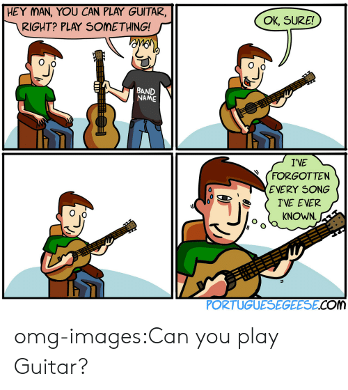 Ok Sure: HEY MAN, YOU CAN PLAY GUITAR,  RIGHT? PLAY SOMETHING!  OK, SURE!  NAME  IVE  (FORGOTTEN  EVERY SONG  IVE EVER  KNOWN  PORTUGUESEGEESE.COM omg-images:Can you play Guitar?