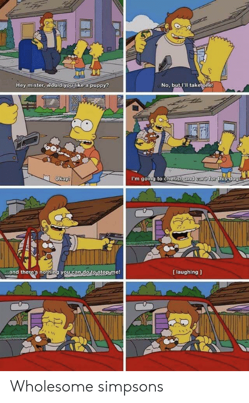 The Simpsons: Hey mister, would you like a puppy?  No, but I'll take one!  Okay!  I'm going to cherish and care for this dog.  [ laughing  and there's nothing you can-do to stop me! Wholesome simpsons
