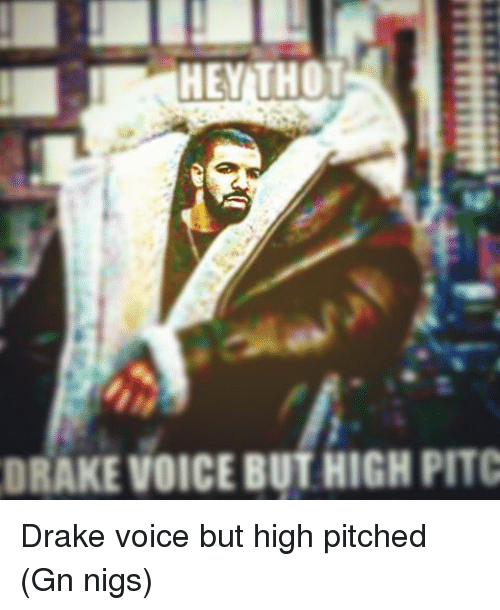 Drake, Memes, and Thot: HEY THOT  DRAKE VOICE BUTHIGHPITC Drake voice but high pitched (Gn nigs)