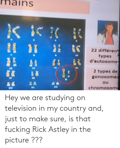 Television: Hey we are studying on television in my country and, just to make sure, is that fucking Rick Astley in the picture ???