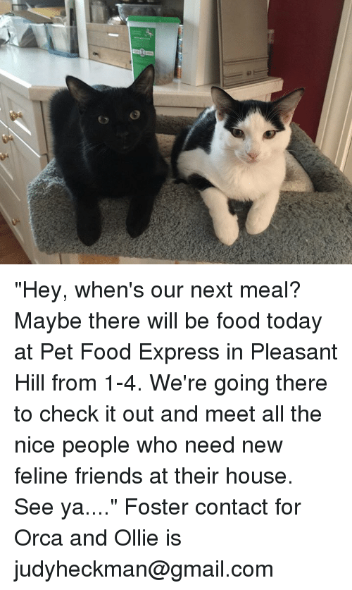 Pet Food Express Pleasant Hill Hours