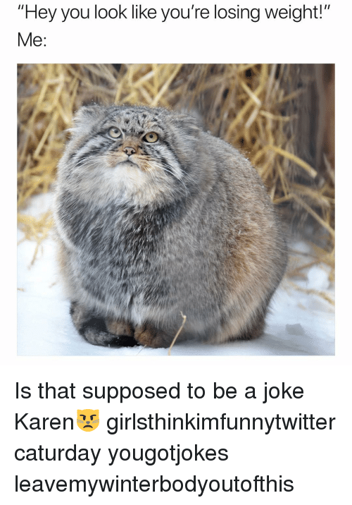 """Losing Weight: """"Hey you look like you're losing weight!""""  Me: Is that supposed to be a joke Karen😾 girlsthinkimfunnytwitter caturday yougotjokes leavemywinterbodyoutofthis"""