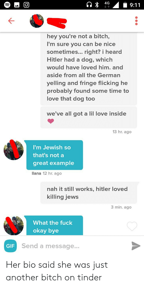 okay bye: hey you're not a bitch,  I'm sure vou can be nice  sometimes... right? i heard  Hitler had a dog, which  would have loved him. and  aside from all the German  Velling and fringe flicking he  probably found some time to  love that dog too  we've all got a lil love in  13 hr.ago  I'm Jewish so  that's not a  great example  llana 12 hr. ago  nah it still works, hitler loved  killing jews  3 min. ago  What the fuck  okay bye  GIF  Send a message.. Her bio said she was just another bitch on tinder