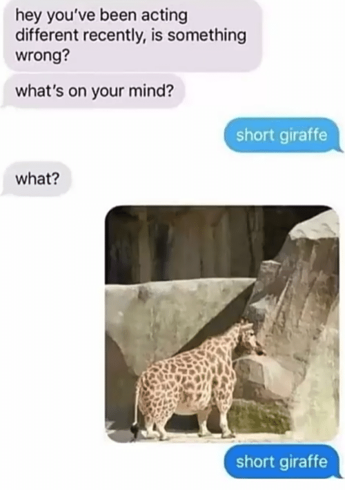 Giraffe: hey you've been acting  different recently, is something  wrong?  what's on your mind?  short giraffe  what?  short giraffe