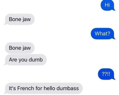 Are You Dumb: Hi  Bone jaw  What?  Bone jaw  Are you dumb  It's French for hello dumbass