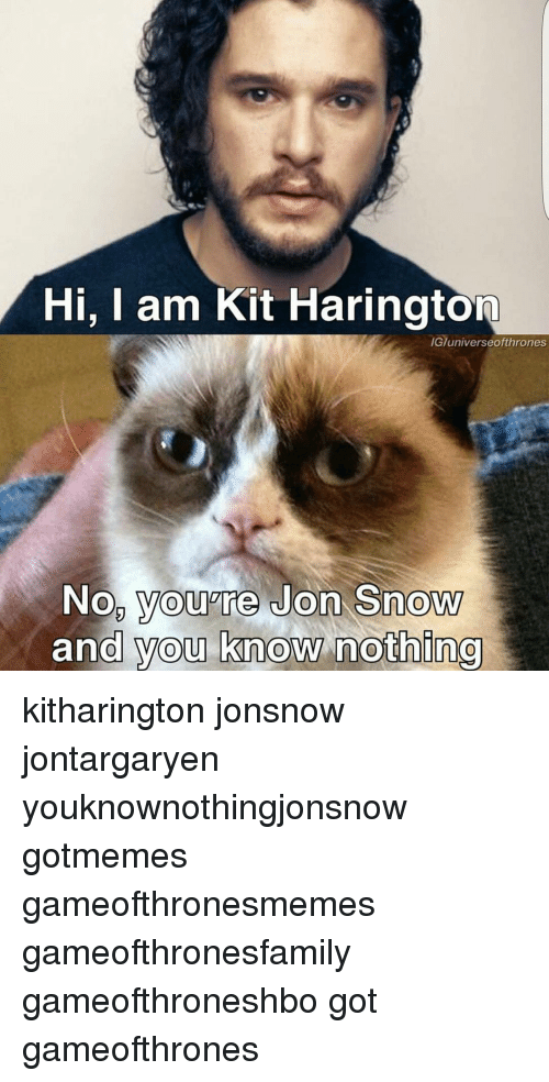 Memes, Jon Snow, and Kit Harington: Hi, I am Kit Harington  IG/universeofthrones  No you're Jon Snow  and you know nothing kitharington jonsnow jontargaryen youknownothingjonsnow gotmemes gameofthronesmemes gameofthronesfamily gameofthroneshbo got gameofthrones
