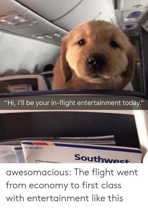 """economy: """"Hi, I'll be your in-flight entertain ment today.""""  IF-551-08/17  Southwest  Safety information awesomacious:  The flight went from economy to first class with entertainment like this"""