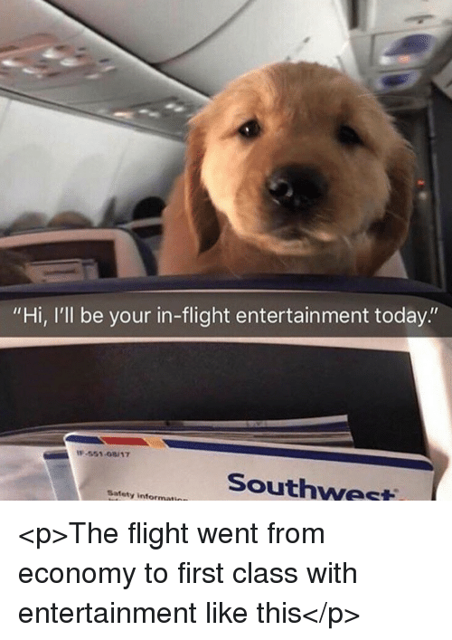 """Flight, Southwest, and Today: """"Hi, I'll be your in-flight entertainment today.""""  -551-08/17  Southwest  Safety informati <p>The flight went from economy to first class with entertainment like this</p>"""