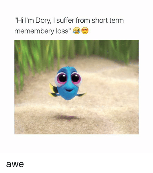 "Girl Memes: ""Hi I'm Dory, Isuffer from short term  memembery loss  e awe"