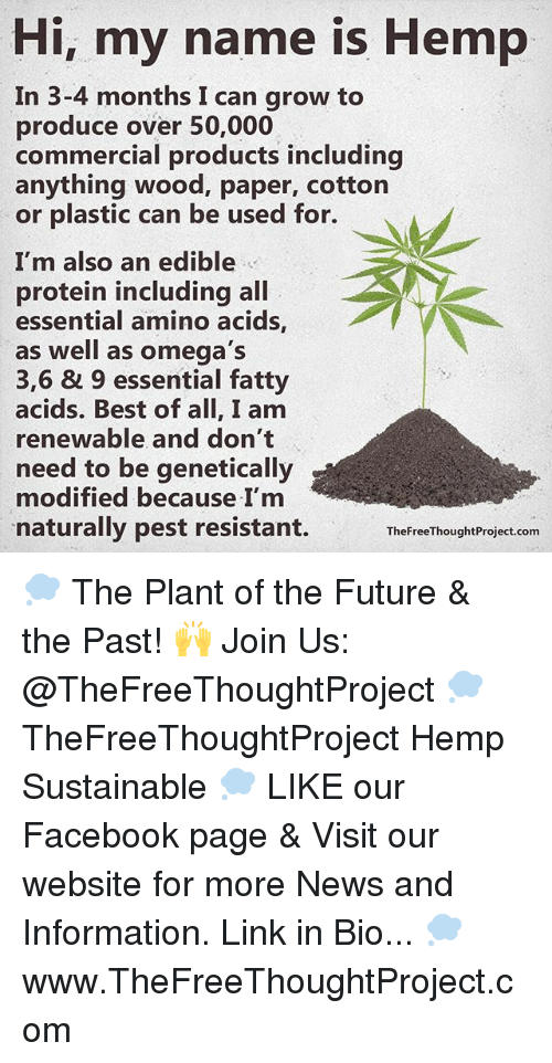 amino acids: Hi, my name is Hemp  In 3-4 months I can grow to  produce over 50,000  commercial products including  anything wood, paper, cotton  or plastic can be used for.  I'm also an edible  protein including all  essential amino acids  as well as omega's  3,6 & 9 essential fatty  acids. Best of all, I am  renewable and don't  need to be genetically  modified because I'm  naturally pest resistant.  The FreeThoughtProject.com 💭 The Plant of the Future & the Past! 🙌 Join Us: @TheFreeThoughtProject 💭 TheFreeThoughtProject Hemp Sustainable 💭 LIKE our Facebook page & Visit our website for more News and Information. Link in Bio... 💭 www.TheFreeThoughtProject.com