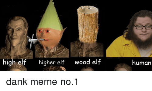high elf higher elf wood elf human dank meme no 1 1635249 high elf higher elf wood elf human dank meme no1 dank meme on sizzle