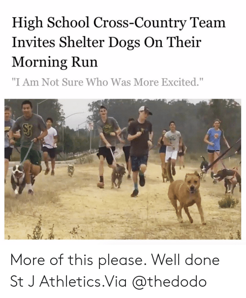"Athletics: High School Cross-Country Team  Invites Shelter Dogs On Their  Morning Run  ""I Am Not Sure Who Was More Excited."" More of this please. Well done St J Athletics.Via @thedodo"