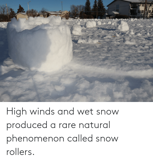 Rollers: High winds and wet snow produced a rare natural phenomenon called snow rollers.