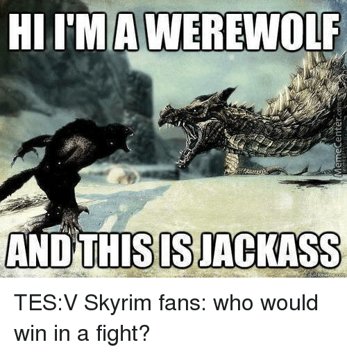 Memes, 🤖, and Tes: HIIMA WEREWOLF  AND THIS SJACKASS TES:V Skyrim fans: who would win in a fight?