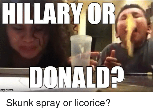 hillary or donald inngfip com skunk spray or licorice 5474468 search spray memes on me me