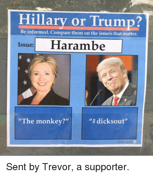 """Trump: Hillary or Trump?  Be informed. Compare them on the issues that matter.  Issue:  """"The monkey?""""  Sent by Trevor, a supporter."""