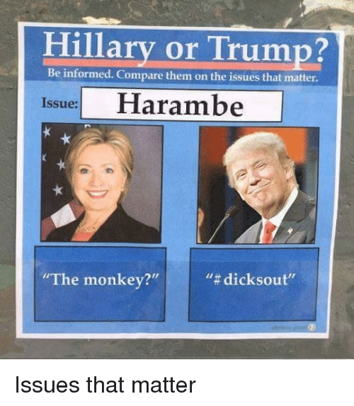 """Trump: Hillary or Trump?  Be informed. Compare them on the issues that matter.  Issue Harambe  """"The monkey?  """"# dicksout"""" <p>Issues that matter</p>"""