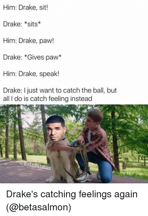 Drake, Memes, and 🤖: Him: Drake, sit!  Drake: *sits  Him: Drake, paw!  Drake: Gives paw  Him: Drake, speak!  Drake: I just want to catch the ball, but  all do is catch feeling instead  almon Drake's catching feelings again (@betasalmon)