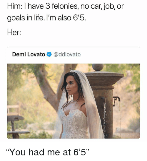 "Demi Lovato, Goals, and Life: Him: I have 3 felonies, no car, job, or  goals in life. I'm also b  Her:  Demi Lovato@ddlovato ""You had me at 6'5"""