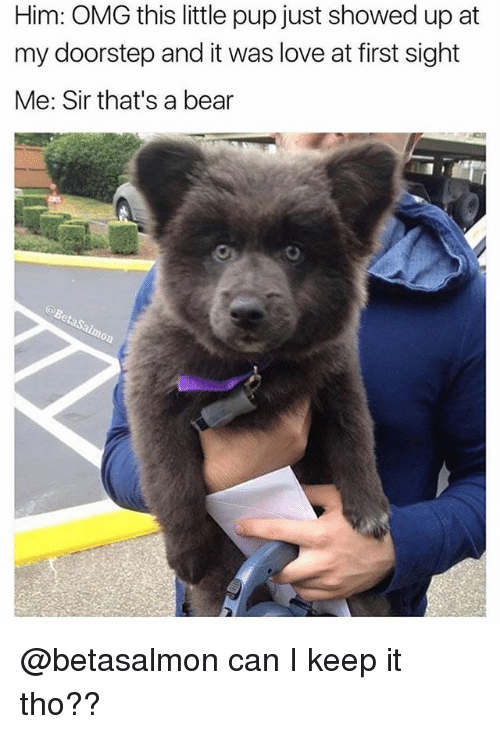 Funny, Love, and Omg: Him: OMG this little pup just showed up at  my doorstep and it was love at first sight  Me: Sir that's a bear @betasalmon can I keep it tho??