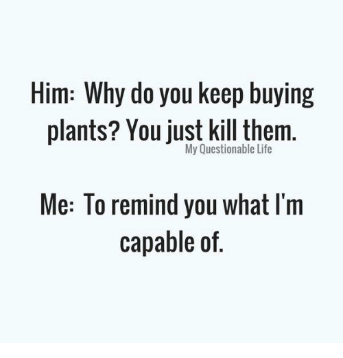 Life, Memes, and 🤖: Him: Why do you keep buying  plants? You just kill them.  My Questionable Life  Me: To remind you what l'm  capable of