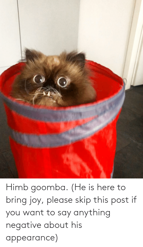 if you want to: Himb goomba. (He is here to bring joy, please skip this post if you want to say anything negative about his appearance)
