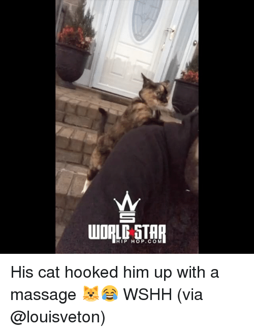 Massage, Memes, and Wshh: HIP HOP.COM His cat hooked him up with a massage 🐱😂 WSHH (via @louisveton)