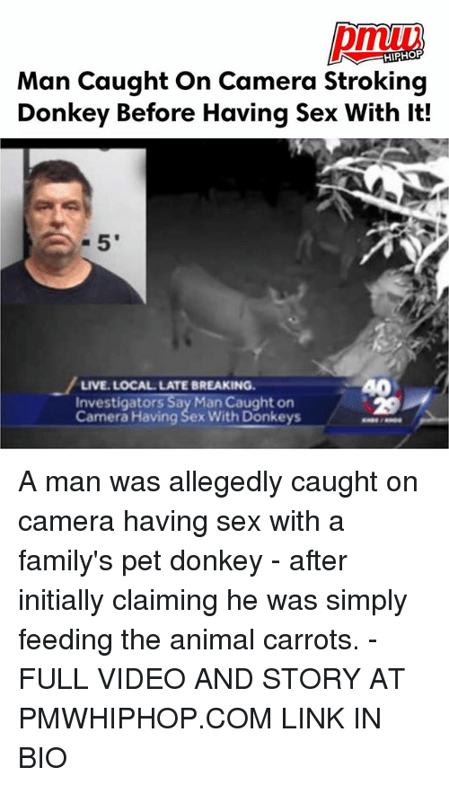 Donkey, Memes, and Sex: HIPHOP  Man Caught On Camera Stroking  Donkey Before Having Sex With It!  40  LIVE. LOCAL LATE BREAKING  Investigators Say Man Caught on  Camera Having Sex With Donkeys A man was allegedly caught on camera having sex with a family's pet donkey - after initially claiming he was simply feeding the animal carrots. - FULL VIDEO AND STORY AT PMWHIPHOP.COM LINK IN BIO