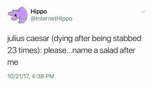 Julius Caesar: Hippo  @lnternetHippo  julius caesar (dying after being stabbed  23 times): please...name a salad after  me  10/21/17, 4:38 PM