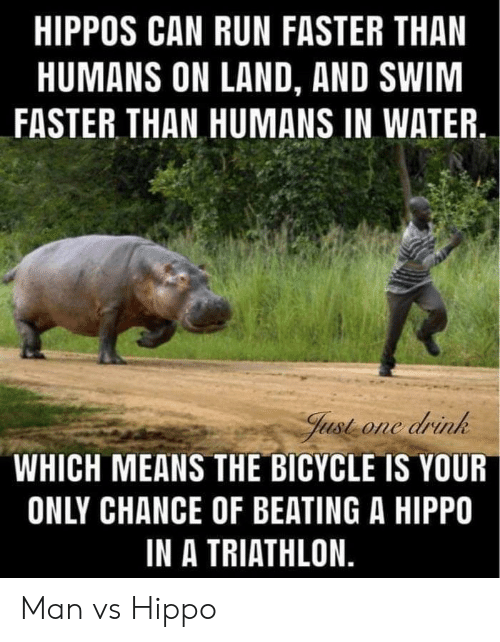 faster: HIPPOS CAN RUN FASTER THAN  HUMANS ON LAND, AND SWIM  FASTER THAN HUMANS IN WATER  Just one drink  WHICH MEANS THE BICYCLE IS YOUR  ONLY CHANCE OF BEATING A HIPPO  IN A TRIATHLON. Man vs Hippo