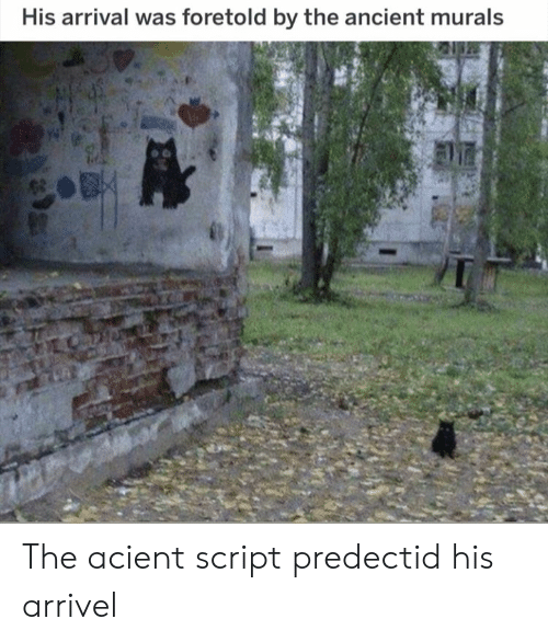 Arrival: His arrival was foretold by the ancient murals The acient script predectid his arrivel
