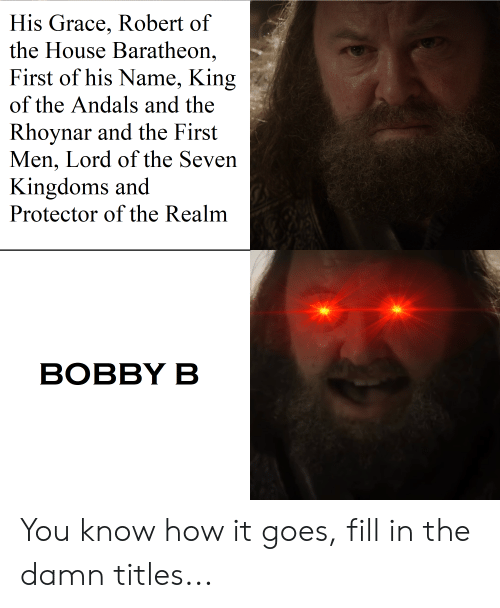 house baratheon: His Grace, Robert of  the House Baratheon,  First of his Name, King  of the Andals and the  Rhoynar and the First  Men, Lord of the Seven  Kingdoms and  Protector of the Realm  ВОBBY B You know how it goes, fill in the damn titles...