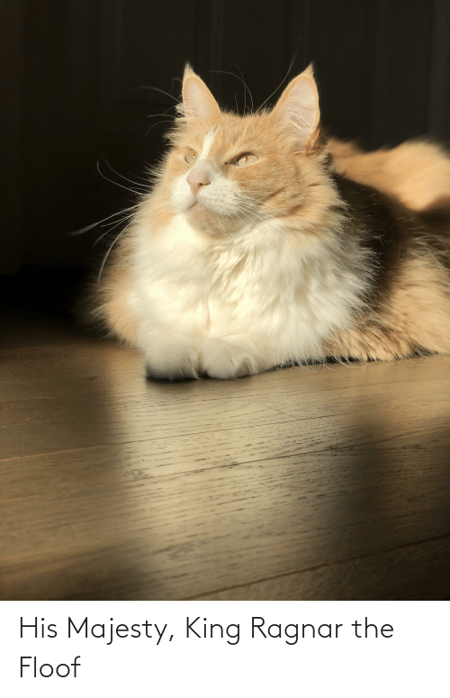 ragnar: His Majesty, King Ragnar the Floof
