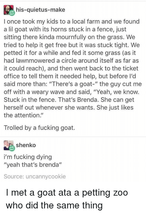 """Fucking, Yeah, and Goat: his-quietus-make  I once took my kids to a local farm and we found  a lil goat with its horns stuck in a fence, just  sitting there kinda mournfully on the grass. We  tried to help it get free but it was stuck tight. We  petted it for a while and fed it some grass (as it  had lawnmowered a circle around itself as far as  it could reach), and then went back to the ticket  office to tell them it needed help, but before I'd  said more than: """"There's a goat-"""" the guy cut me  off with a weary wave and said, """"Yeah, we know.  Stuck in the fence. That's Brenda. She can get  herself out whenever she wants. She just likes  the attention.""""  Trolled by a fucking goat.  shenko  i'm fucking dying  """"yeah that's brenda""""  Source: uncannycookie I met a goat ata a petting zoo who did the same thing"""