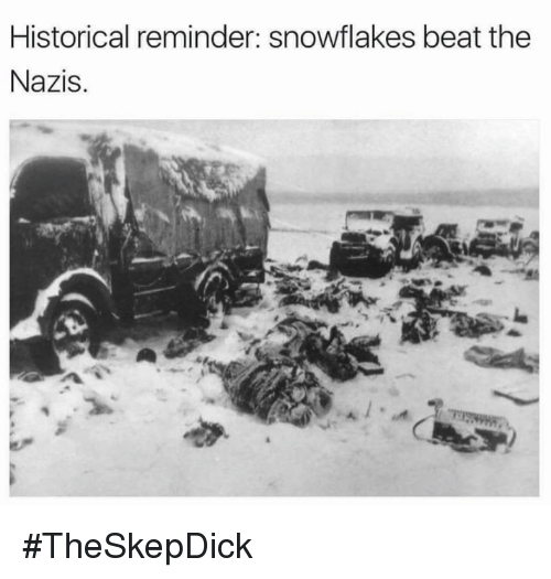 Memes, Historical, and 🤖: Historical reminder: snowflakes beat the  Nazis. #TheSkepDick