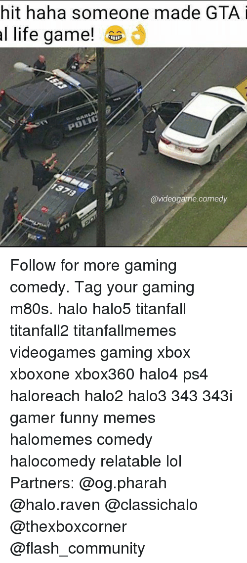 ravenous: hit haha someone made GTA i  al life game!  @videogame comedy Follow for more gaming comedy. Tag your gaming m80s. halo halo5 titanfall titanfall2 titanfallmemes videogames gaming xbox xboxone xbox360 halo4 ps4 haloreach halo2 halo3 343 343i gamer funny memes halomemes comedy halocomedy relatable lol Partners: @og.pharah @halo.raven @classichalo @thexboxcorner @flash_community