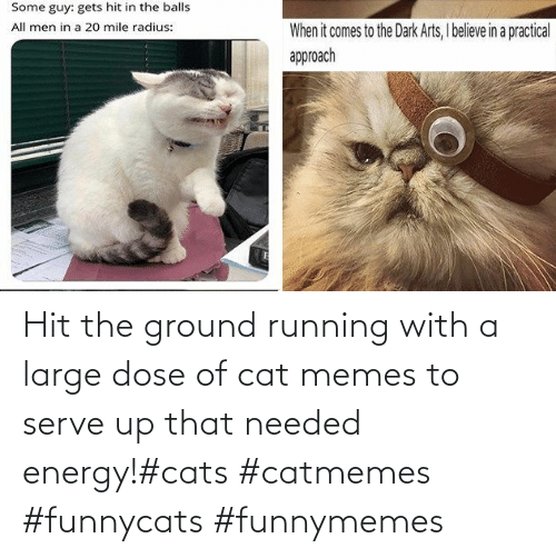 funnymemes: Hit the ground running with a large dose of cat memes to serve up that needed energy!#cats #catmemes #funnycats #funnymemes