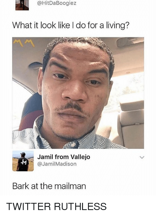 Memes, Twitter, and Ruthless: @HitDaBoogiez  What it look like l do for a living?  Jamil from Vallejo  @JamilMadison  Bark at the mailman TWITTER RUTHLESS