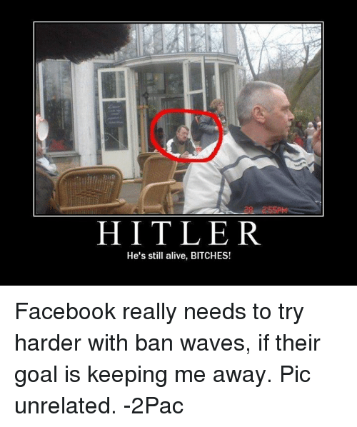 hitler hes still alive bitches facebook really needs to try 4446991 🔥 25 best memes about most tasteless most tasteless memes
