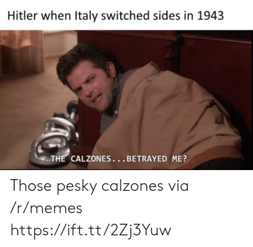 betrayed: Hitler when Italy switched sides in 1943  THE CALZONES...BETRAYED ME? Those pesky calzones via /r/memes https://ift.tt/2Zj3Yuw