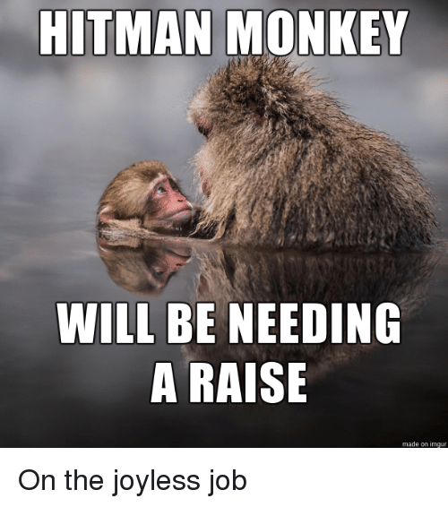 how to raise a monkey