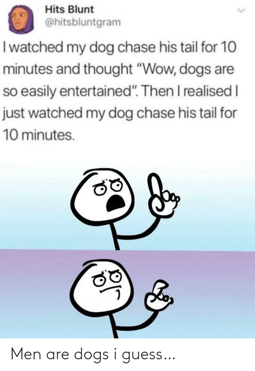 "tail: Hits Blunt  @hitsbluntgram  I watched my dog chase his tail for 10  minutes and thought ""Wow, dogs are  so easily entertained"". Then I realised I  just watched my dog chase his tail for  10 minutes. Men are dogs i guess…"