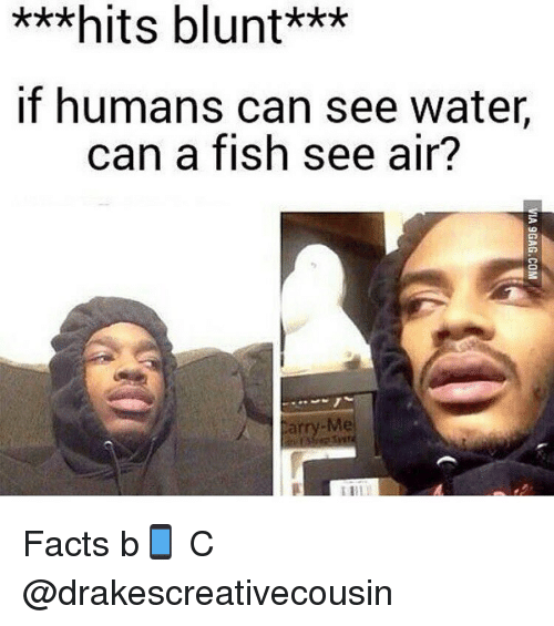 Search hits blunt memes on for Can fish see water