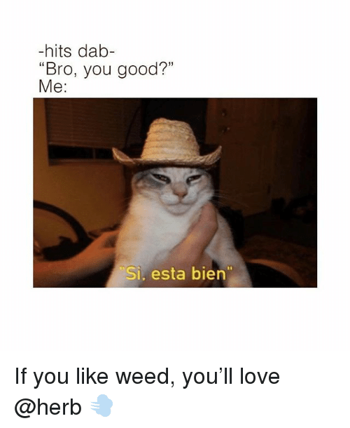 "Funny, Love, and Weed: -hits dab-  ""Bro, you good?""  Me:  Si, esta bien If you like weed, you'll love @herb 💨"