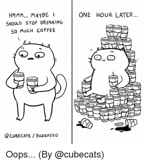 Drinking, Memes, and Buzzfeed: HMMM... MAYBE  ONE HOUR LATER...  SHOULD STOP DRINKING  SO MUCH COFFEE  CCU8ECATS / BuzzfEED Oops... (By @cubecats)