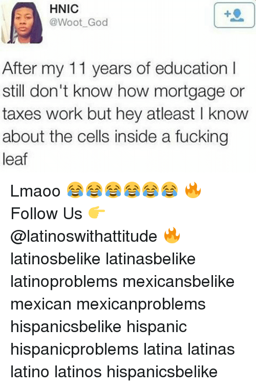 A Fucking Leaf: HNIC  @Woot God  After my 11 years of education I  still don't know how mortgage or  taxes work but hey atleast l know  about the cells inside a fucking  leaf Lmaoo 😂😂😂😂😂😂 🔥 Follow Us 👉 @latinoswithattitude 🔥 latinosbelike latinasbelike latinoproblems mexicansbelike mexican mexicanproblems hispanicsbelike hispanic hispanicproblems latina latinas latino latinos hispanicsbelike